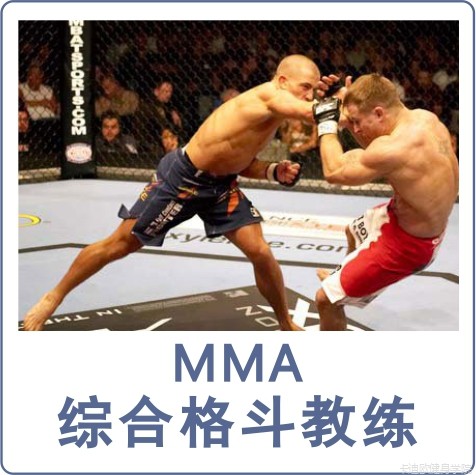 MMA综合格斗教练